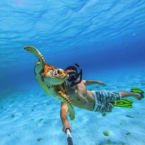 Top 10 Islands World Cebu snorkler