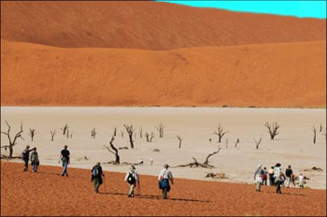 deadvlei, visitors descending into the white sandy pan