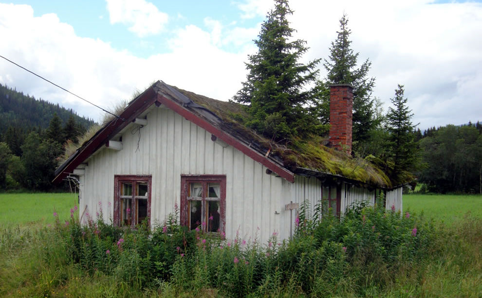 Cabin with Tree Rooftop Latitude Longitude